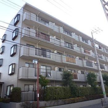 コートハウス新川崎