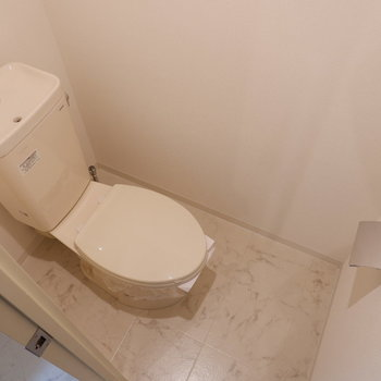 トイレはもちろん扉で仕切られています。