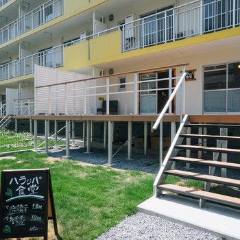 1号棟の101号室にオープンしたのはハラッパ食堂。※写真は前回募集時のものです