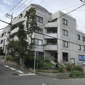 閑静な住宅街に目立つ、しっかりした建物。