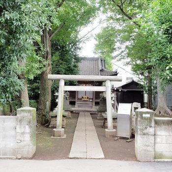 お部屋のすぐ近くの神社!