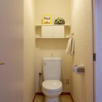 トイレも彩りやすく、さらに上部に備品を入れられます。※家具はサンプルです