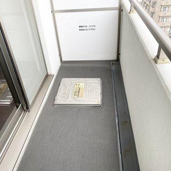 バルコニーには物干し竿がありません。浴室乾燥機をお使いください。