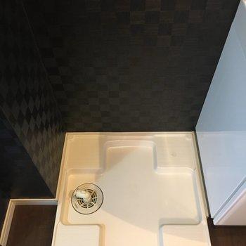 洗濯機置場は洗面台の左。※写真は別室5階のものです。