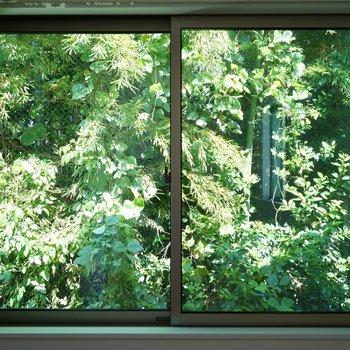 窓一面に緑が良いー!※写真は2階の反転間取り別部屋です。