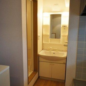 シャワー洗面台※写真は同階反転間取り別部屋のものです
