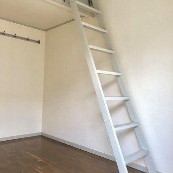 ハシゴを上がると何があるのかな♪※写真は2階の同間取り別部屋のものです