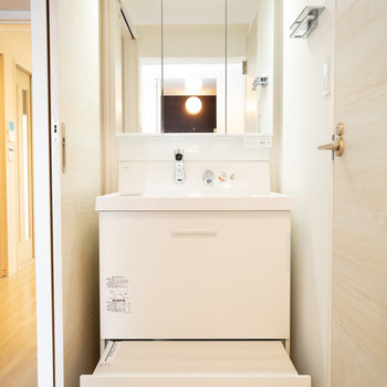 洗面台は一番下にスライド式のステップがついています。収納にもなりますよ。※画像は同タイプ反転間取りの別部屋です