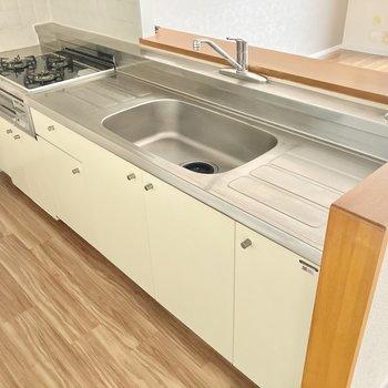 キッチンはかなり広々!水切りラックを置いたりもできそうです。