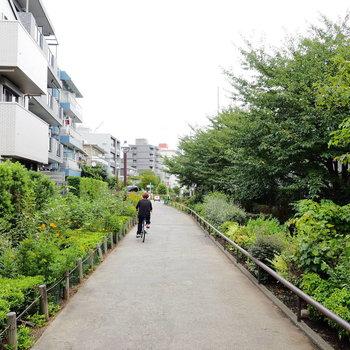 池尻大橋駅までは緑道をいけますよ〜