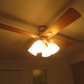 シーリングファンと照明と