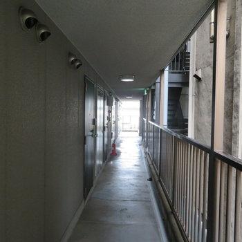 廊下はかなり暗かったです