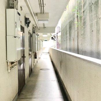 ちょっと暗めな廊下。