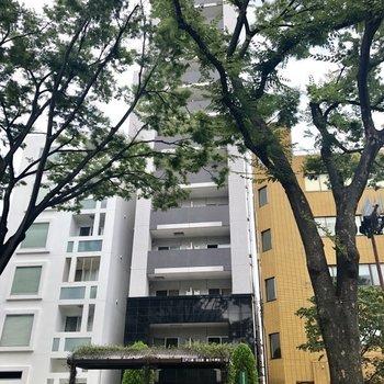 木々で隠れていますが、真ん中の細長い建物が今回のお部屋。すぐ目の前にバス停がありますよ。