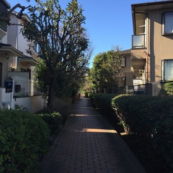上井草までの小道。