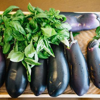 畑で獲れた野菜を使ったお料理もいただけます