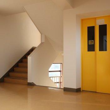 キュートな黄色!