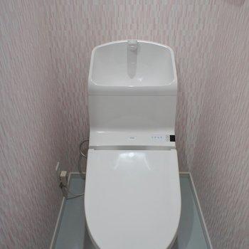 トイレにもアクセントクロスが。