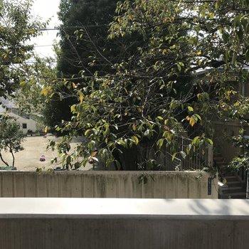 眺望は、保育園の園庭が観えました