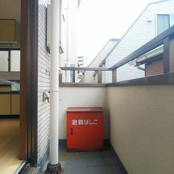 バルコニーに洗濯機置場があります。