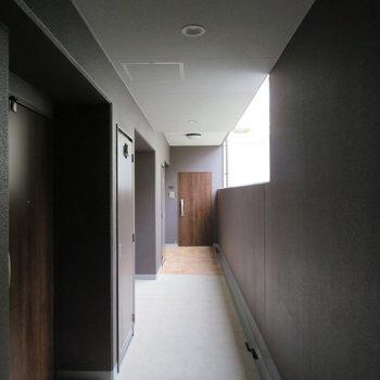 廊下ももちろん綺麗ですね