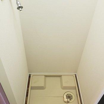 洗濯機置場は扉・照明付き。