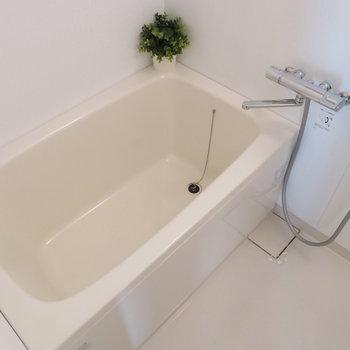 お風呂も綺麗◎