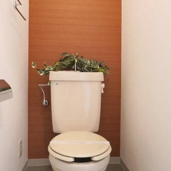 トイレにもアクセントクロス