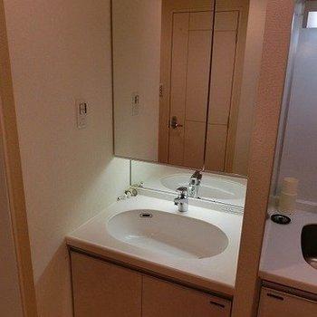 鏡の大きな洗面台※写真は3階同間取りの別部屋