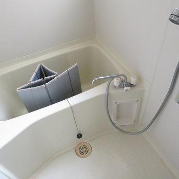 お風呂も綺麗ですよ