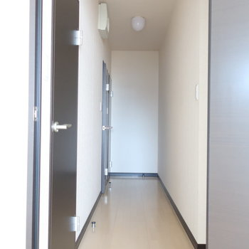手前から、バスルーム、トイレ、クローゼット。扉が3つ