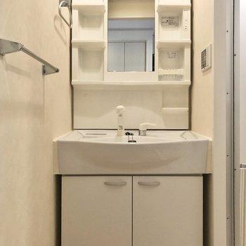 独立洗面台は細かい収納もしっかり。