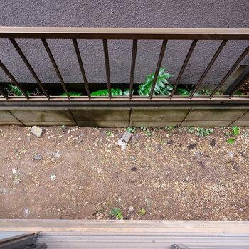 1階の窓を開けるとお隣との間に土が。植物を直接植えても楽しそう。