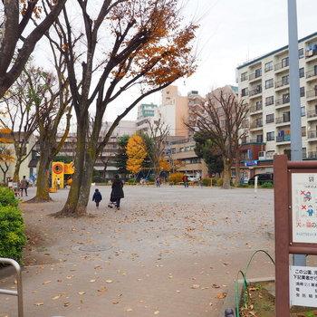 近くの公園です◎※写真は前回募集時のものです