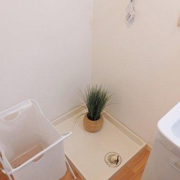 洗濯機置き場はもちろん室内。※写真は同間取り別部屋のものです。