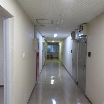 【共有部】そしてうち廊下の共有部。※写真は前回募集時のものです。