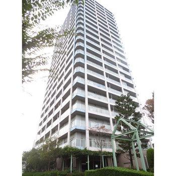 藤和志木タワー