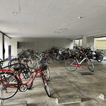乱雑に置かれていてどこからどこまでが駐輪スペースなのか分からない。