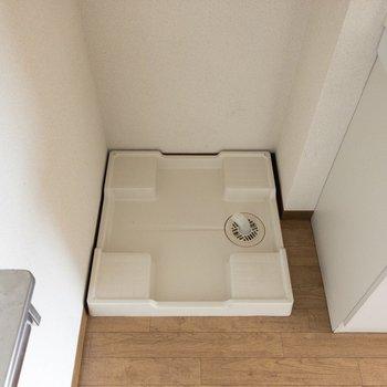 その横には洗濯パン。※写真は8階の同間取り別部屋のものです。
