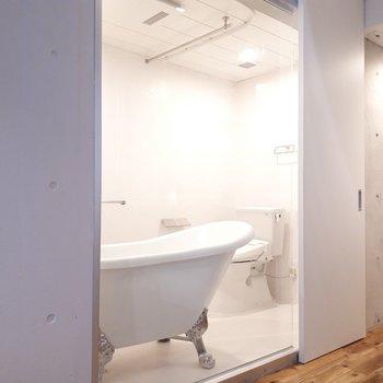 なんと浴室&トイレはガラス張り。