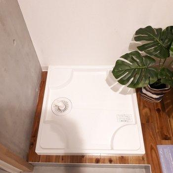 洗濯機置き場は玄関脇にあります。 ※家具は見本です。