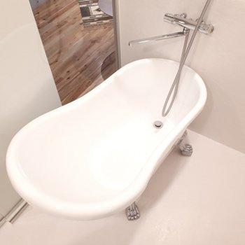 浴槽はこんな形。足が生えてます!