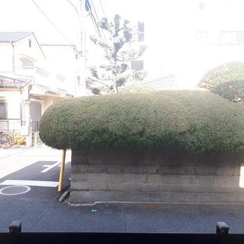 眺望】お迎えさんの植栽がみえますね!