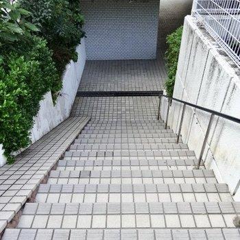 裏側殻ならこの階段を降りて・・・