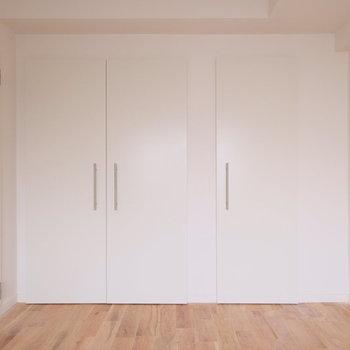 もう一つの居室は収納が大きい!