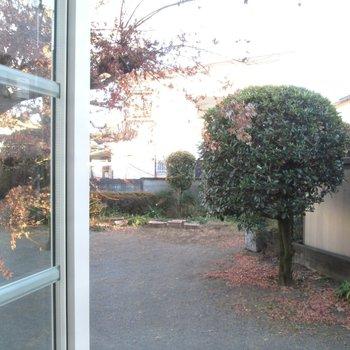 小窓からは小さな公園が見えますよ〜