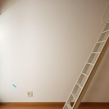 はしごを上がると・・・(※写真は通電前・清掃前のものです)