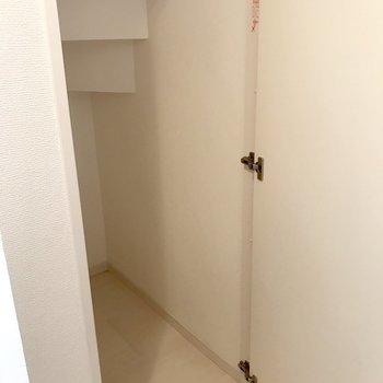 階段下の収納。奥に広め。(※写真は2階の同間取り別部屋のものです)