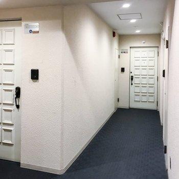 共用部。レトロな扉が可愛いですね♪