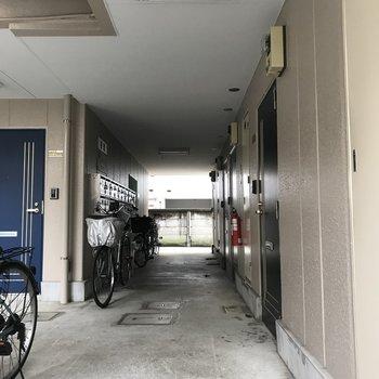 共有部は駐輪場と兼用で使われているみたいです